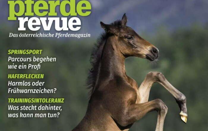 Thema Autoaufbereitung für Pferde- und Tierbesitzer in der Pferderevue, Ausgabe 2021- April.